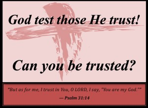 Trust and test